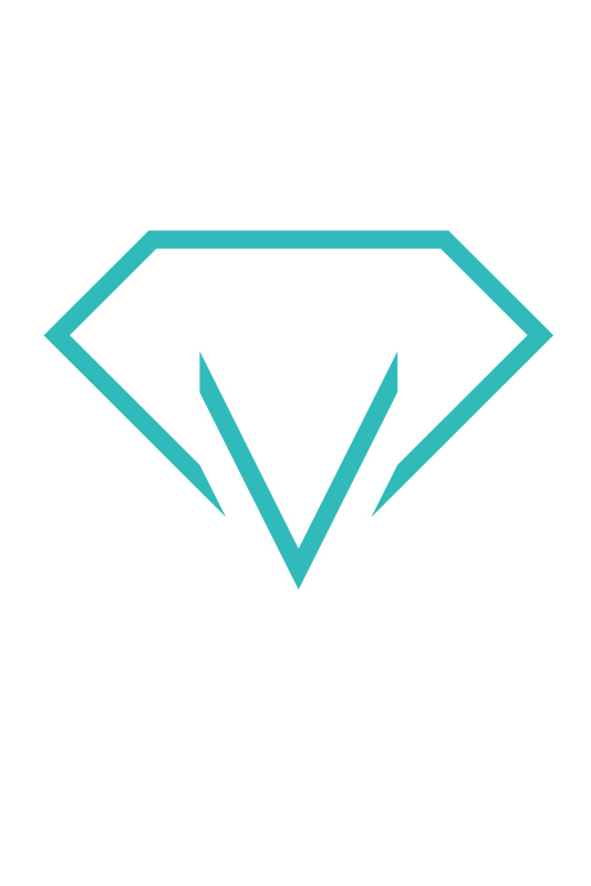 Logo_team_2